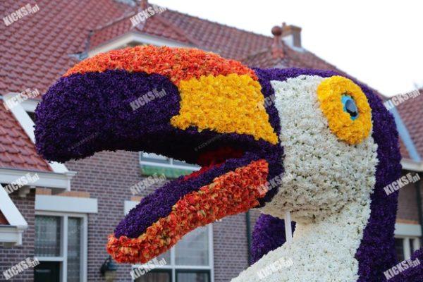 AA8I3549.JPG - Kicksfotos.nl
