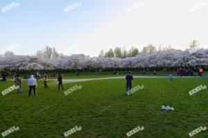 AA8I9334.JPG - Kicksfotos.nl